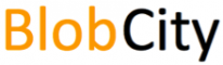 Server Administration Internship at BlobCity in