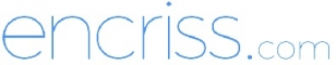 Business Analytics Internship at Encriss Technologies LLP in
