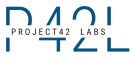 Web Development Internship at Project42 Labs in