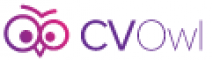Web Development Internship at CVOwl in