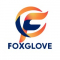 Web Development Internship at Foxglove Connect Private Limited in Gurgaon