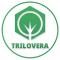 Internship at Trilovera.com in Mumbai