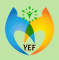 Journalism Internship at Youth Empowerment Foundation in