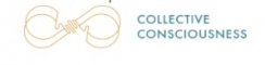 Web Development Internship at The Collective Consciousness in