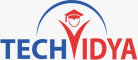 Business Development (Sales) Internship at TechVidya Career Private Limited in Noida