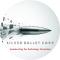 Social Media Marketing Internship in Noida at Silver Bullet Corporation